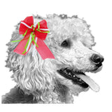 Christmas Party Dog Bow - For small to large dogs - dog-collar-fancy
