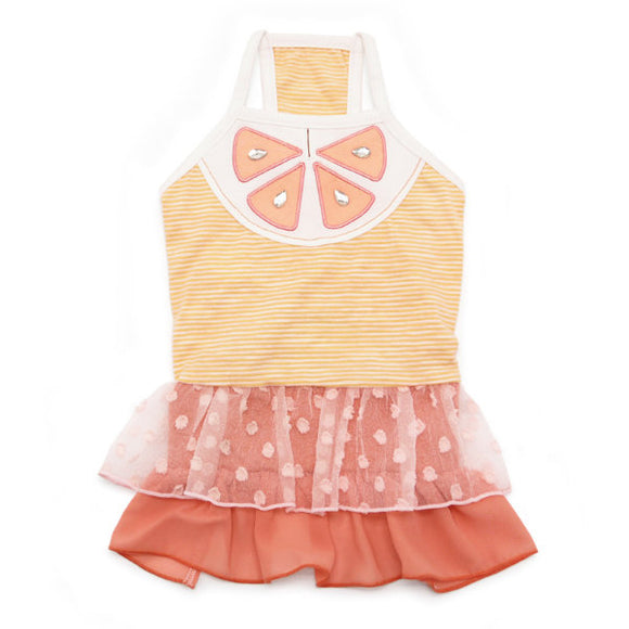 Citrus orange dog dress