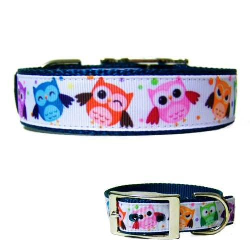 This adorable owls printed dog collar is bright and colorful for your medium to large dog.