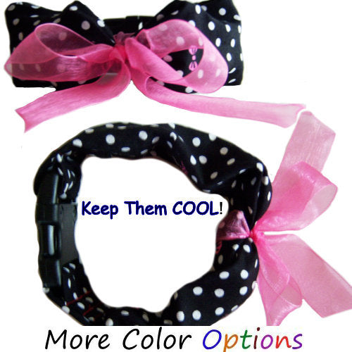 Cuties dog cooling collars