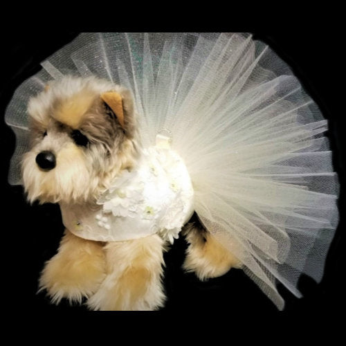 Creamy 3D Floral Dog Dress model dog