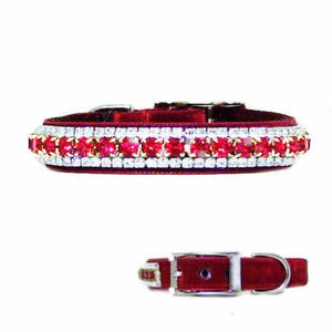 Ruby and Diamond Dog Collar in Velvet - For dogs and cats - dog-collar-fancy