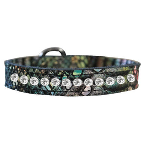 1 row Dragon Dog Collars in magic multi color