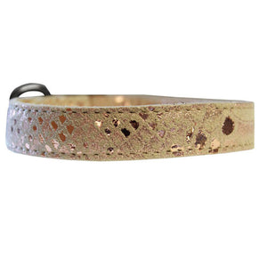 Dragon Pet Collar in Gold