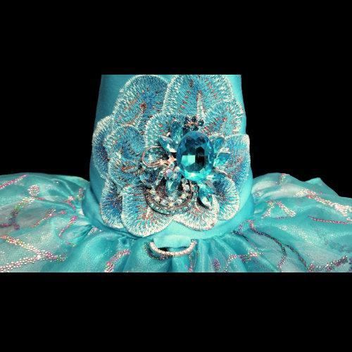 Turquoise and Rainbow Swirls Dog Dress crystal flower embellishment