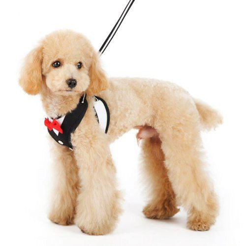 Formal Tuxedo Dog Harness with Bow Tie side view