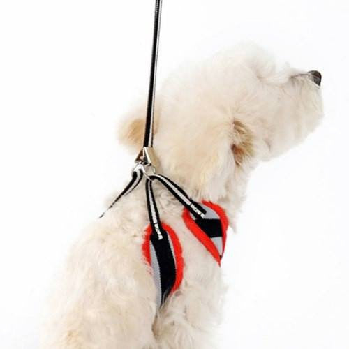 EasyGo Polo Dog Harness with free leash
