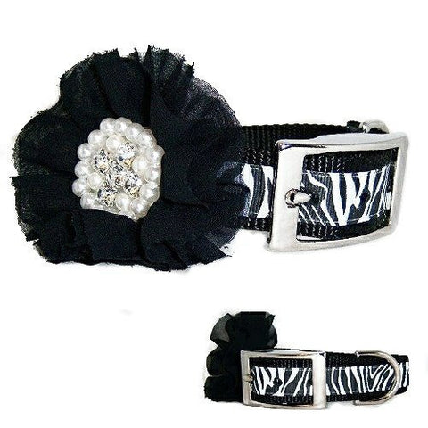 A fancy zebra print dog collar with a big rhinestone and pearl removable flower.