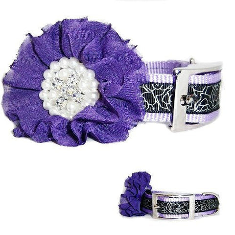 Fancy flower series purple dog collar with removable rhinestone flower.