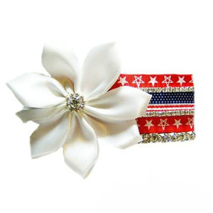 A patriotic dog collar accessory for 4th of July and other patriotic holidays.