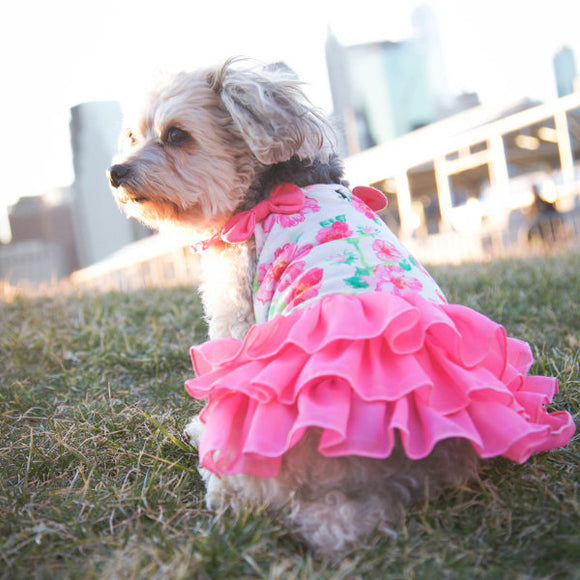 Floral Flounce dog dress for spring and summer