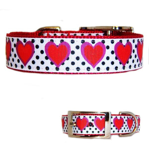 Hearts and Dots Printed Pet Collar - dog-collar-fancy