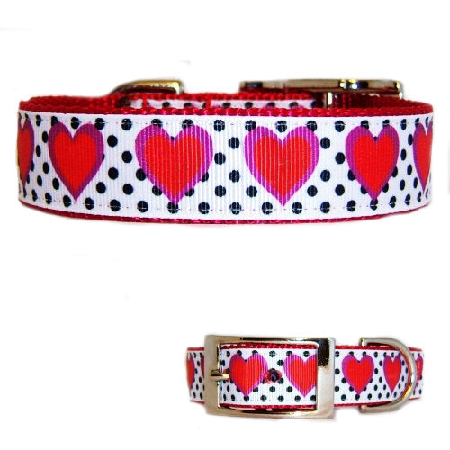 Hearts and Dots Printed Pet Collar - For dogs and cats - dog-collar-fancy