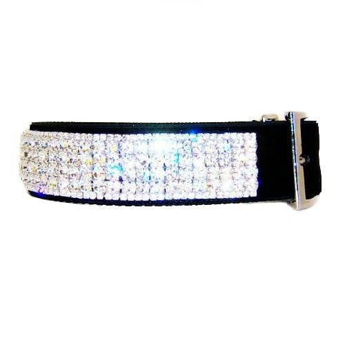 Hollywood Diamonds large dog collar filled with clear crystals to look like diamonds.