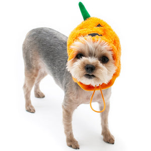 Jack O Lantern Dog Hat in furry pumpkin style