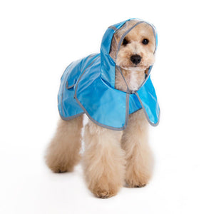 Sweet jelly blue dog raincoat with hood