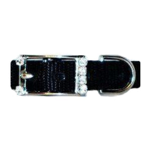 Jeweled buckle option for collars