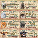 Dog breed style choices 3