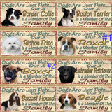 Dog breed style choices 1