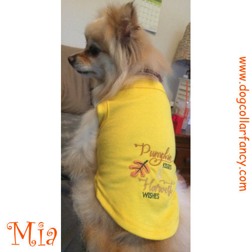 Dog Shirt - Pumpkin Kisses - dog-collar-fancy