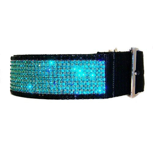 Night moves wide crystal dog collar side view.