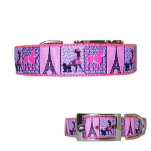 A Paris poodle printed dog collar for medium to large dogs.