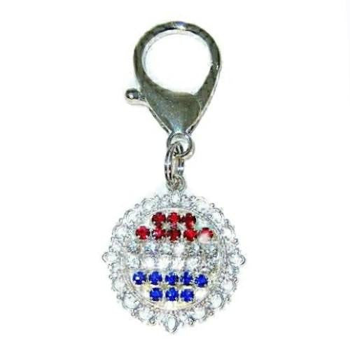 Patriotic red white and blue crystal pet collar charm.