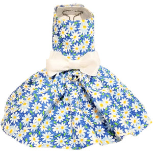 Daisies dog dress on blue background with bow