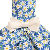Daisies print dog dress close up