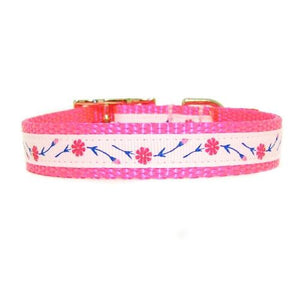 Hot pink floral printed pet collar for girl dogs and cats.