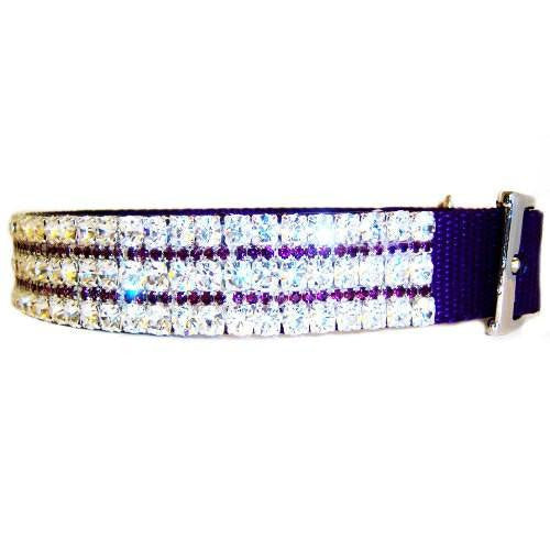 Purplicious dog collar side view.