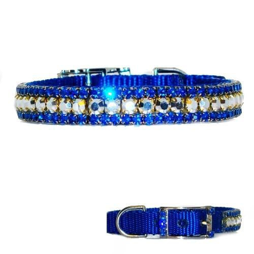 Royal blue and silver crystals decorate this gorgeous flashy dog collar.