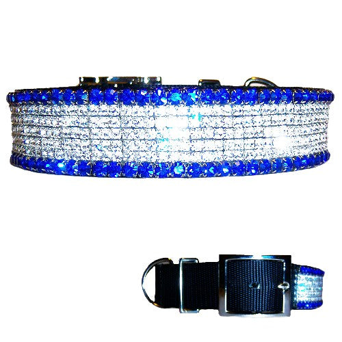 1 1/2 wide Bling Sapphire Dog Collar - For medium to large dogs