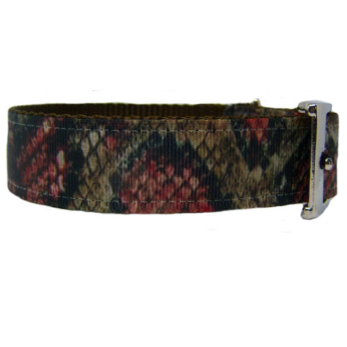 Printed Snakeskin dog collar side view