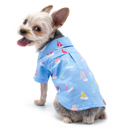 Sailor boy dog shirt model dog