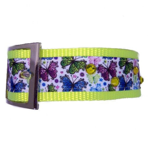 Butterflies printed large dog collar side view.