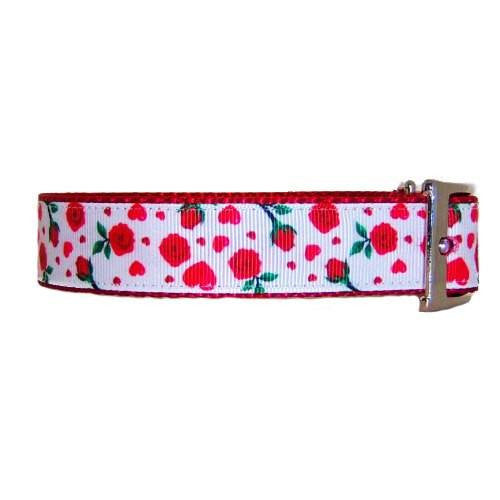 Roses print dog collar side view.