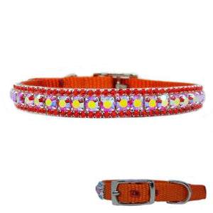 Sweet Tangerine Jeweled Pet Collar in orange