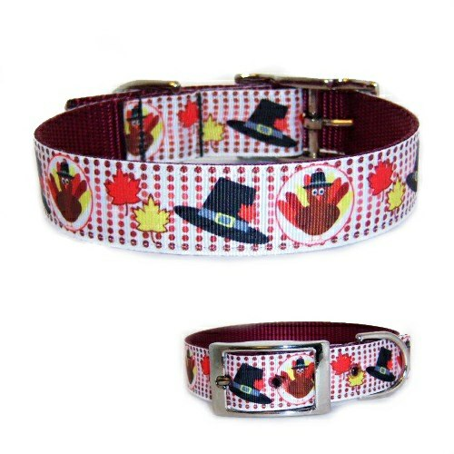 Thanksgiving dog collar with turkeys, pilgrim hats and fall leaves print.