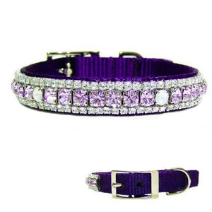 The Daydreamer Crystal Jeweled Pet Collar - For dogs and cats - dog-collar-fancy