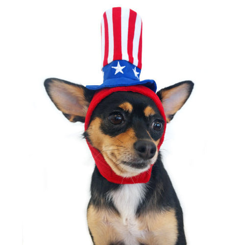 Patriotic Uncle Sam Dog Hat