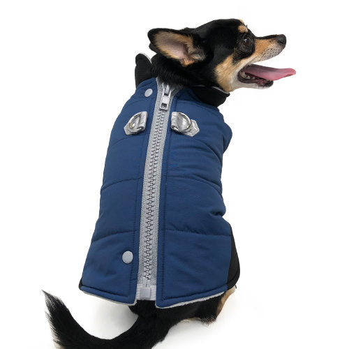 Navy Runner Dog Coat model dog