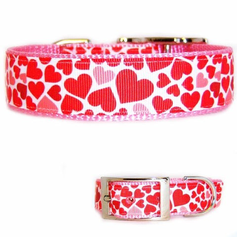 Cute scattered red and pink hearts decorate this Valentine's Day dog collar.