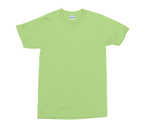 Mint Gildan Heavy Cotton Adult T-Shirt (GD005)