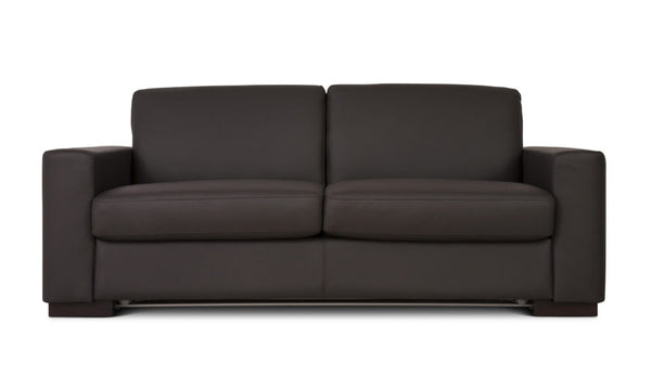 Fusion Leather Queen Size Sofa Bed by Fanuli (n)