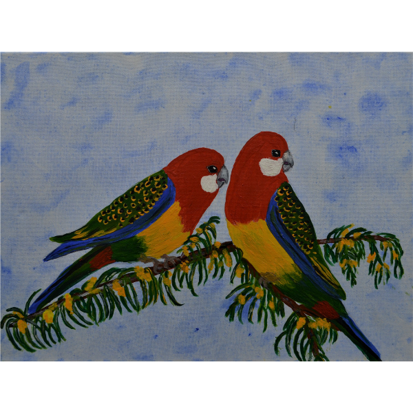 EASTERN ROSELLAS