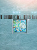 Seashells Tile Mural, High Quality (won't fade), Indoor or Outdoor, Beach Wall Tiles, Backsplash, Shower, Mosaic
