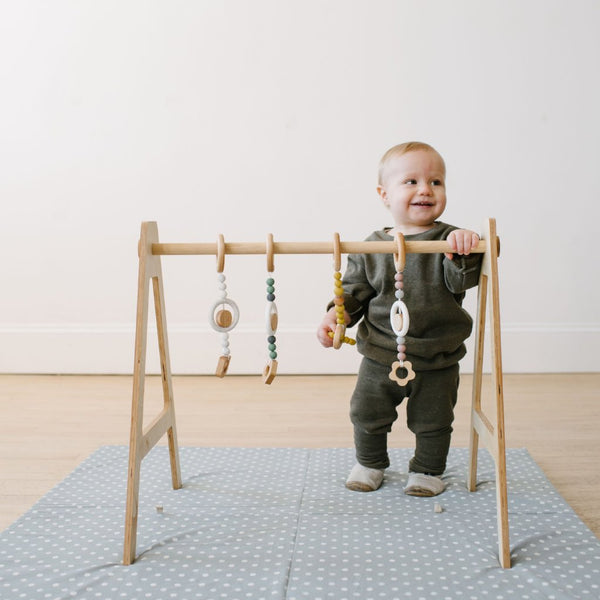 the PLAY GYM + a set of three toys