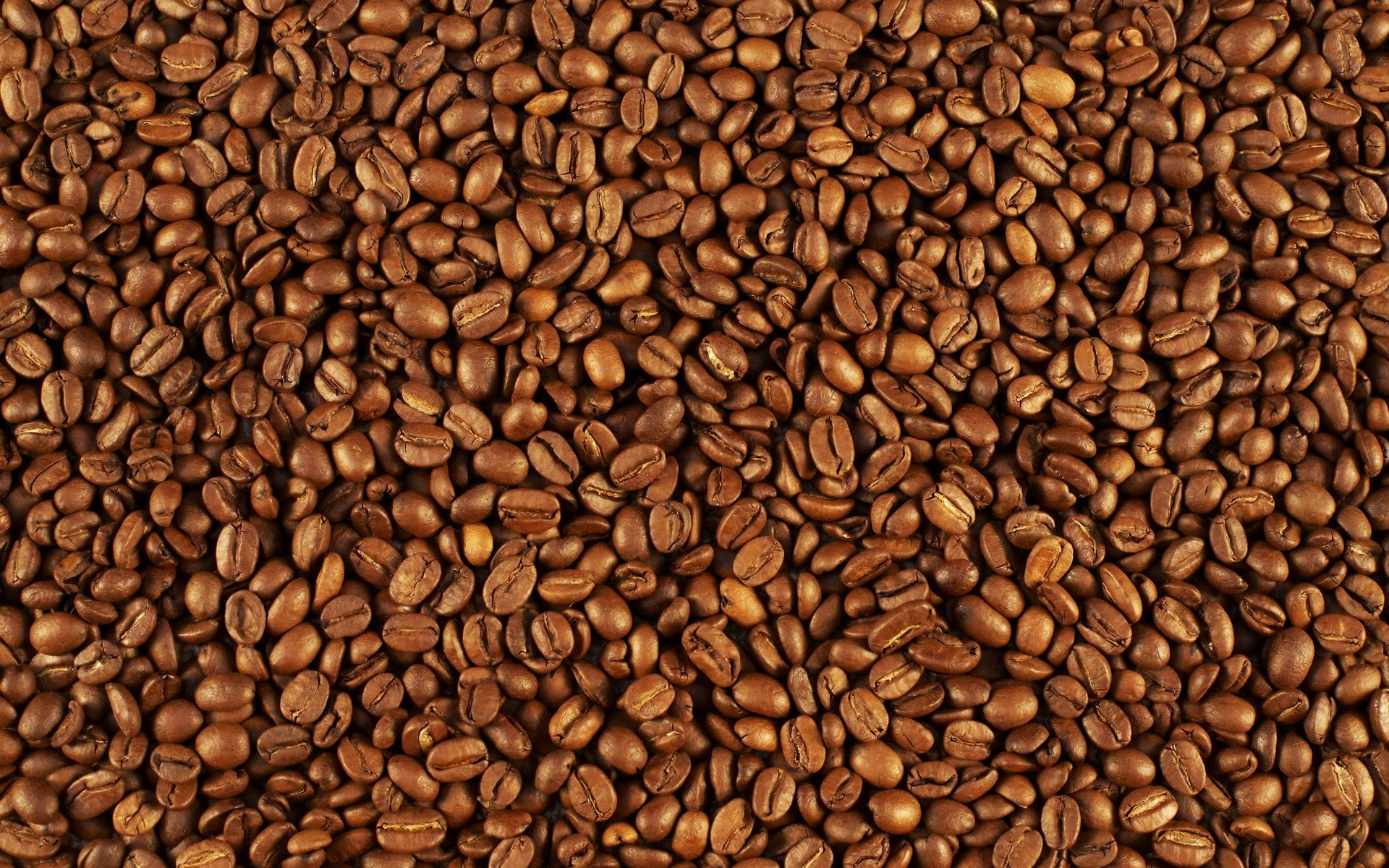 FRESHLY ROASTED COFFEE