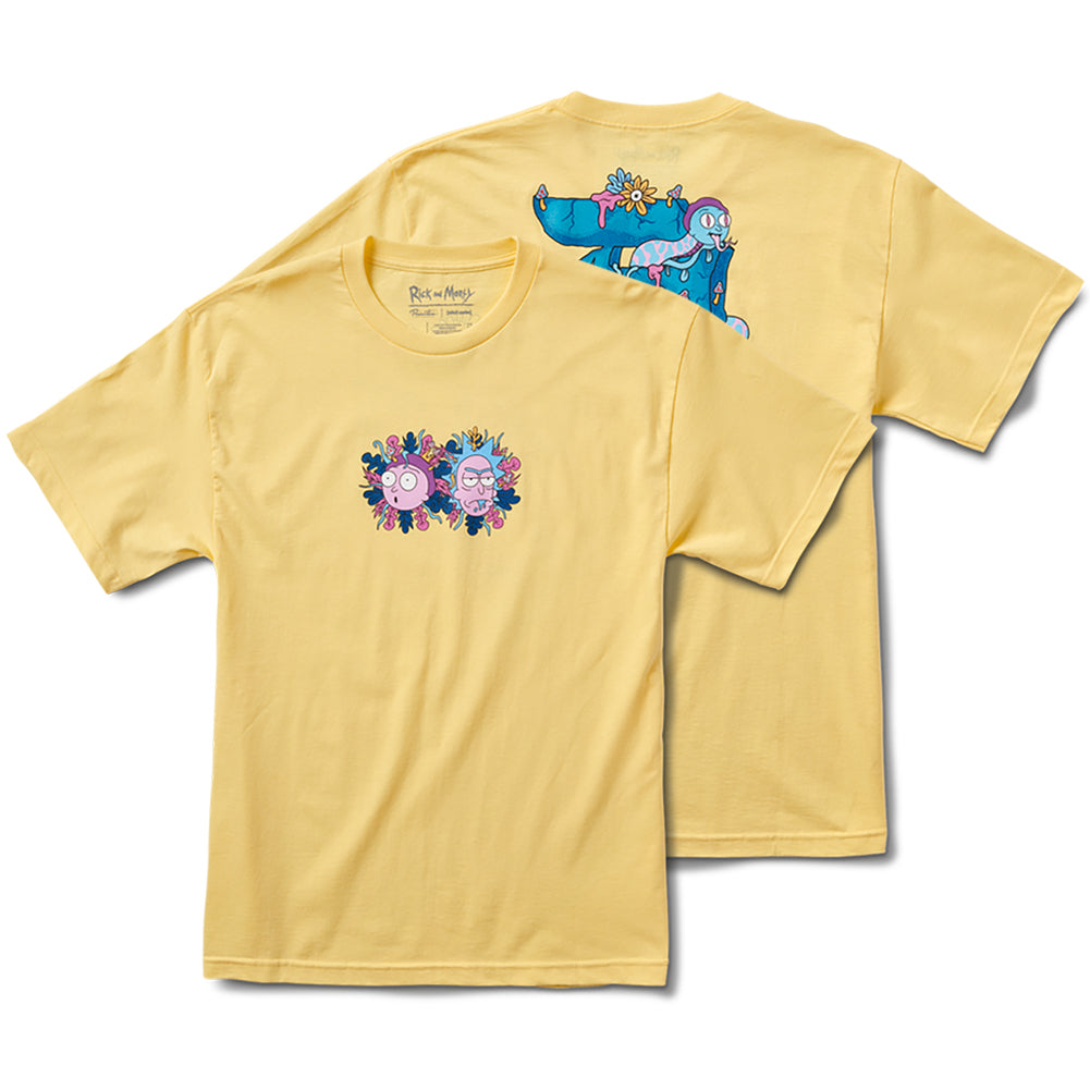 Primitive X Rick and Morty Dirty P R&M T-Shirt